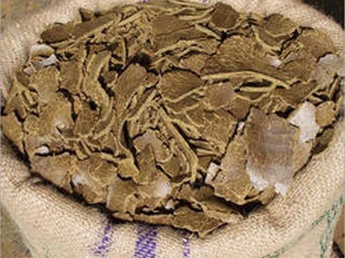 Storage of cotton seed cake ; Prices went up to four thousand | सरकी ढेपची साठवणूक; भावगेले चार हजारांवर
