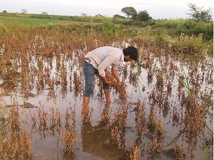Within ten days all was over; Again a new struggle for farmer | अवघ्या दहा दिवसांत सारे संपले; उरला पुन्हा एक नवा संघर्ष
