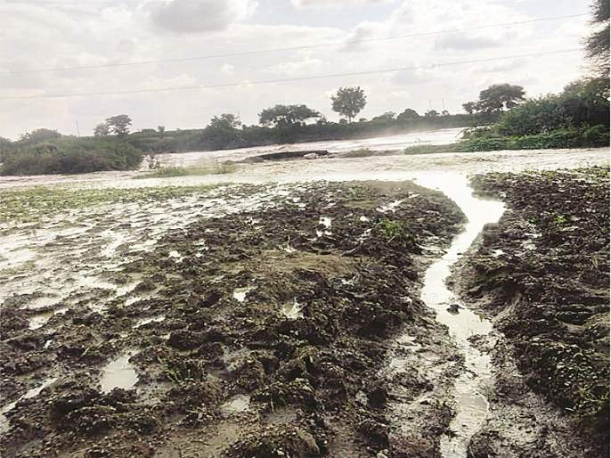 What was the crop, the land also flowed by heavy rainfall | पिकेच काय, जमीन पण वाहून गेली