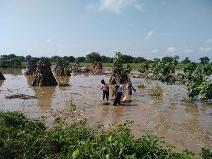 Return rainfall damages crop; there be a grant of Rs 3,000 crore in Marathwada? | परतीच्या पावसाचा फटका; मराठवाड्यात ३ हजार कोटींचे अनुदान लागणार ?