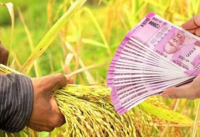 50 crore loan to 15 percent farmers in Buldhana district   १५ टक्के शेतकऱ्यांनाच रब्बीचे ५० कोटी कर्ज वाटप