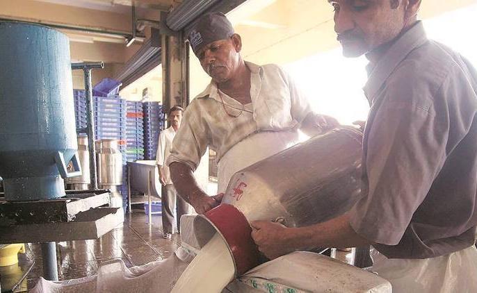 Appointment of administrator; Board of Directors of Solapur District Milk Association dismissed | प्रशासकाची नियुक्ती;सोलापूरजिल्हा दूध संघाचे संचालक मंडळ बरखास्त