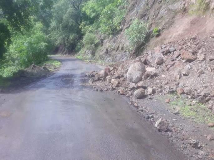 Rehabilitation of fallen trees in Ghats in Ghats, 'Siskep' campaign in Raigad district | घाटातील दरडीमध्ये कोसळलेल्या वृक्षांचे पुनर्वसन, रायगड जिल्ह्यात 'सिस्केप'ची मोहीम