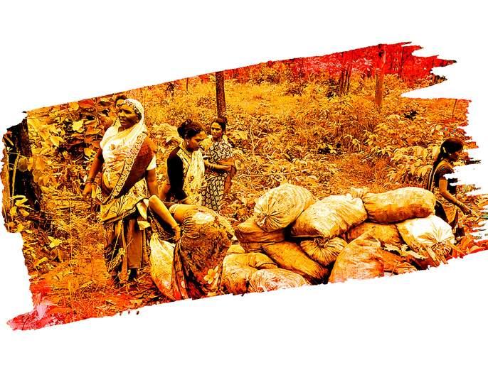 The life risk battle of Murmgaon women of prohibition of alcohol.   जीव धोक्यात घालून मुरूमगावच्या महिला लढता आहेत दारूबंदीची लढाई!