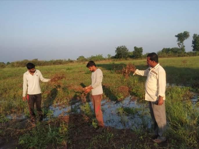 Though the deadline given by the Chief Secretary has expired, Panchanam has been slow in Jalgaon district | मुख्य सचिवांनी दिलेली मुदत संपली तरीही जळगाव जिल्ह्यात पंचनामे धीम्या गतीने