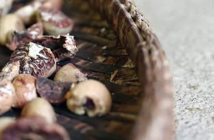 CBI probes decomposed betel nut imports in Nagpur   नागपुरातील सडकी सुपारी आयातीचा तपास सीबीआयकडे?