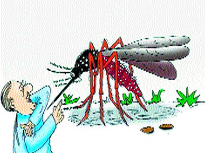 Chikungunya, accompanied by viral fever with dengue | चिकनगुनिया, डेंग्यूसोबत कोल्हापूरात या व्हायरल तापाची लागण
