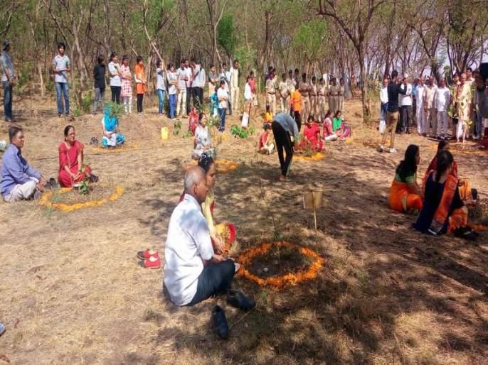 Rare forestry Shrub : 'Birth-day' of trees in Nashik | जंगली झुडुपांची पडणार भर : 'वनराई'त नाशिककर साजरा करणार वृक्षांचा 'बर्थ-डे'