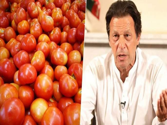 India responsible for inflation in Pakistan; The claim of the minister of Imran Khan | पाकिस्तानमधील महागाईसाठी भारत जबाबदार; इम्रान खानच्या मंत्र्याचा दावा