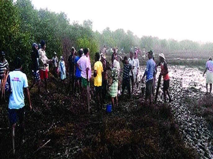 Shramdaan of 300 farmers started the repair work on the second day   बंधा-यांच्या दुरुस्तीचे काम दुस-या दिवशीही सुरू, 300 शेतक-यांचे श्रमदान