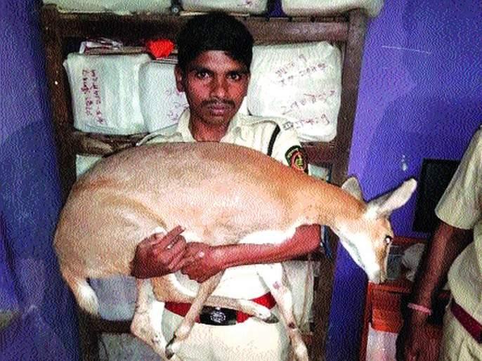 Police convict Patil for killing Bhekar | भेकर मृत्यूप्रकरणी पोलीस पाटलावर गुन्हा