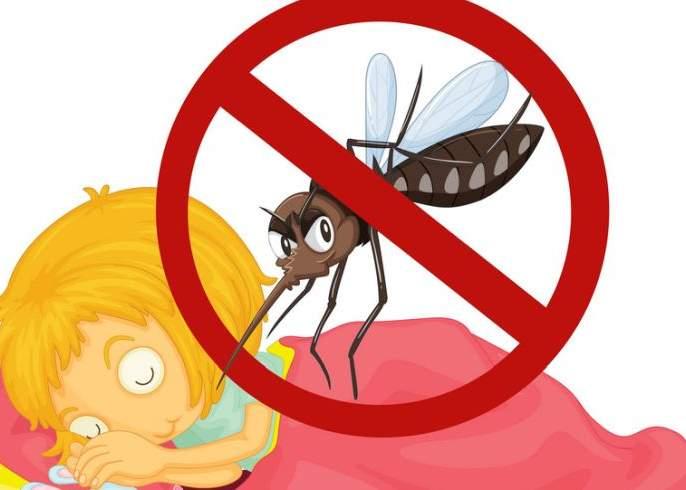 Along with corona, the risk of dengue also increased, 17 patients were found in the district | कोरोनाबरोबरच डेंग्यूचाही धोका वाढला, जिल्ह्यात १७ रुग्ण आढळले