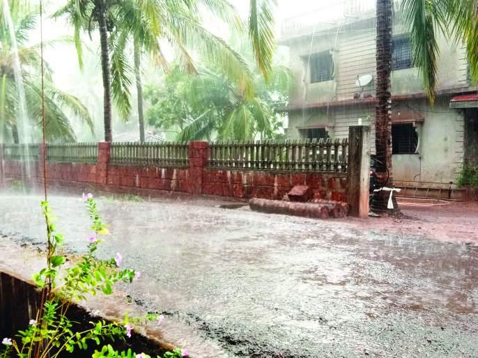 Heavy rain in Dodamarg taluka | दोडामार्ग तालुक्यात मुसळधार पाऊस