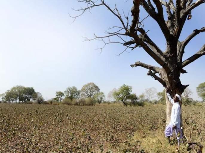 The drought market hit | दुष्काळाचा बाजारपेठेला फटका