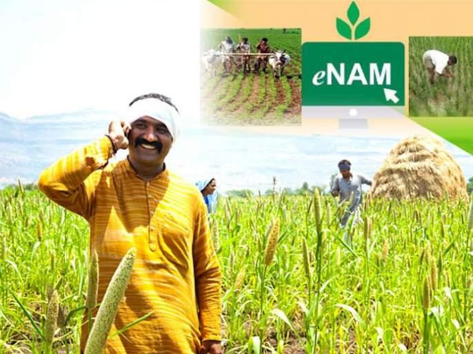 E-Nams Against APMC: Foolish Controversy   कृउबास विरुद्ध ई-नाम: निरर्थक वाद