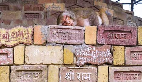 Ayodhya: History of Cultural Harmony! | अयोध्या : सांस्कृतिक सौहार्दाचा इतिहास!