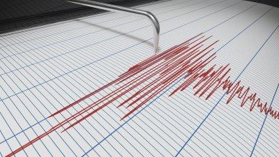 Koenanagar earthquake shakes mildly | कोयनानगर भूकंपाच्या सौम्य धक्क्याने हादरले