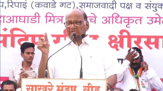 Maharashtra Election 2019: There will be a repeat of 1980 in the beed; Sharad Pawar expressed his faith   Maharashtra Election 2019: बीडमध्ये १९८० ची पुनरावृत्ती नक्की होणार; शरद पवारांनी व्यक्त केला विश्वास