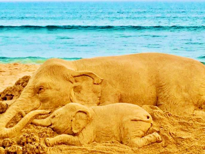 Kerala elephant death: Sudarsan Pattnaik condemns cruel act with sand art | Kerala Elephant Death: तिच्या डोळ्यातील वेदना अस्वस्थ करेल; हत्तीणीच्या हत्येचा वाळूशिल्पातून निषेध