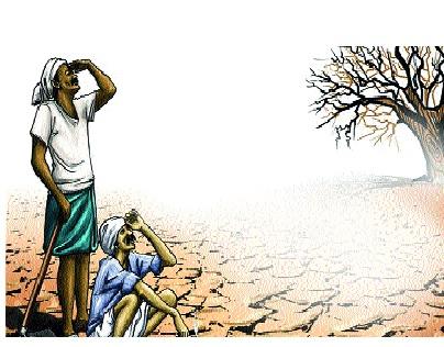 There is no sowing yet in the area of 5.5 lakh hectare due to lack of rain | चिंताजनक! पावसाने दडी मारल्याने पश्चिम विदर्भातील साडेपाच लाख हेक्टर क्षेत्रात अद्याप पेरणी नाही