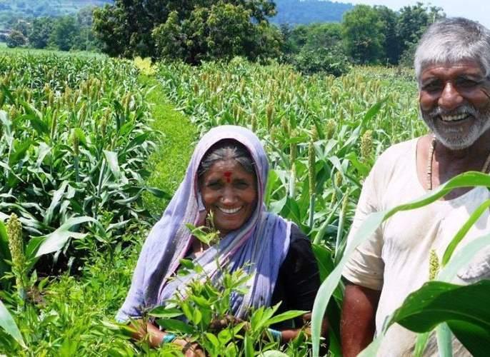 Farmers in Nagpur district free of debt | नागपूर जिल्ह्यातील३१ हजारावर शेतकरी कर्जमुक्त