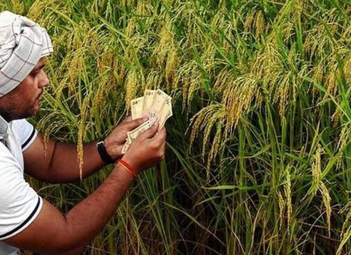 248 crore proposal for the help of farmers | २.९७ लाख शेतकऱ्यांच्या मदतीसाठी २४८ कोटींचा प्रस्ताव!