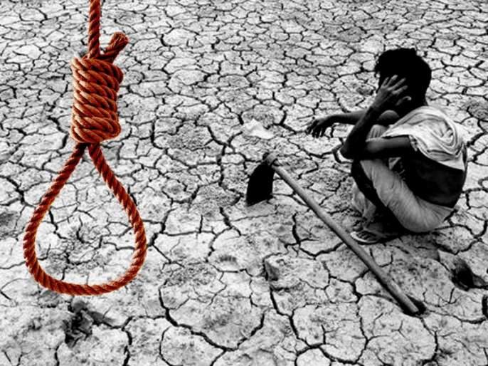 7 farmers commits suicide a day in maharashtra 1307 cases till the end of june this year 2018 | राज्यात दररोज 7 शेतकऱ्यांच्या आत्महत्या; 6 महिन्यांत 1307 शेतकऱ्यांनी संपवलं जीवन