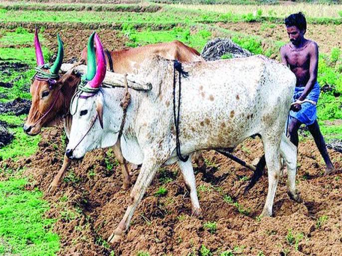second list of farmer loan waiver will be released tomorrow | कर्जमाफीची दुसरी यादीउद्याच