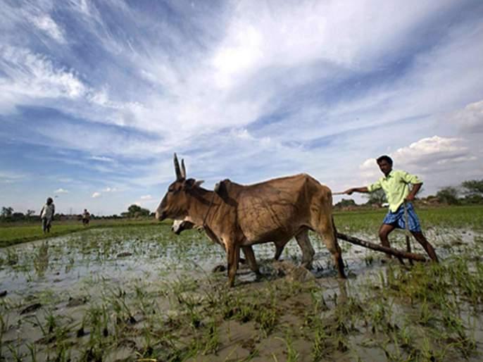 Good news! Monsoon is satisfactory this year; 9 6 percent chance of rains   खूशखबर ! यंदा मान्सून समाधानकारक; ९६ टक्के पावसाची शक्यता
