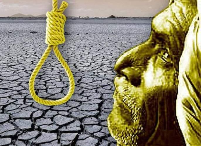 251 farmers suicides in Nagpur region during the year   नागपूर विभागात वर्षभरात शेतकऱ्यांची २५१ आत्महत्या