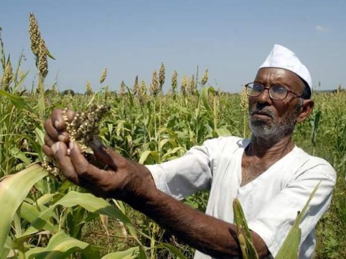 Farmers not get help in the chaos of government formation | सरकार बनविण्याच्या लगबगीत शेतकऱ्यांच्या मदतीचा पेच!
