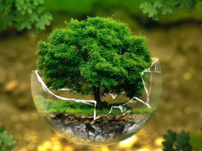 Environment and the future | World Environment Day: पर्यावरण आणि भविष्य