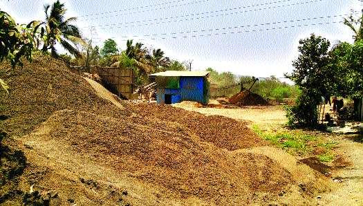 In the coastal crisis due to rocky excavation | दगडगोट्यांच्या उत्खननामुळे किनारपट्टी संकटात