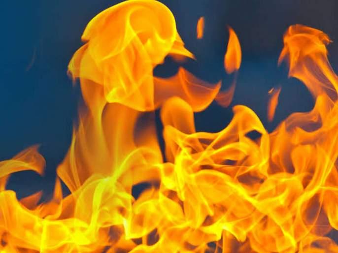 Woman tahsildar burnt to death In Telangaga's Rangareddy District | धक्कादायक! महिला तहसिलदाराला ऑफिसमध्ये घुसून जिवंत जाळले