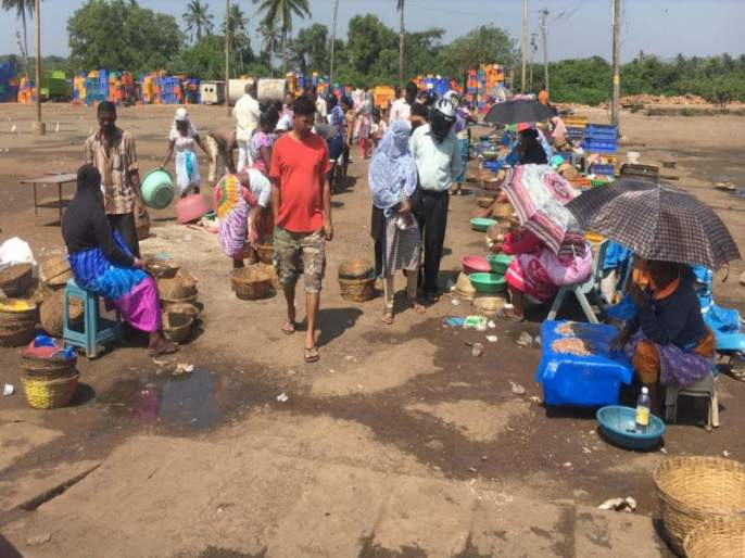 Goa fishing is closed but fish are being sold on the streets | गोव्यात मासेमारी बंद पण रस्त्यांवर मासे विक्री सुरूच