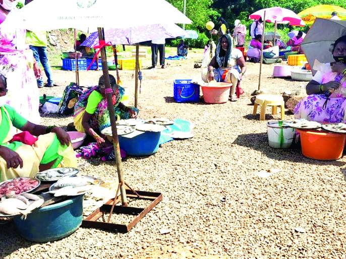 Vengurla residents waiting for a well-equipped fish market   वेंगुर्लावासीयांना सुसज्ज मच्छीमार्केटची प्रतीक्षा