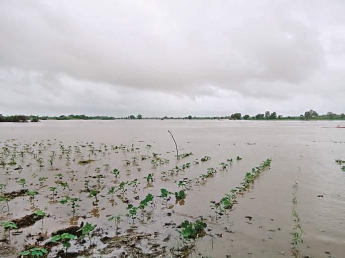 Agriculture in Kolhapur region hit Rs 3,500 crore | कोल्हापूर विभागातील शेतीला साडेतीन हजार कोटींचा फटका