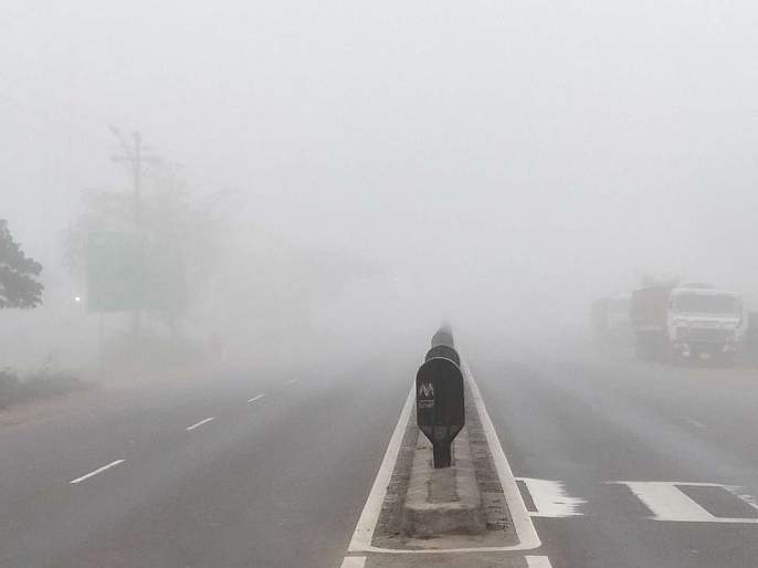 Dark Fog in Lonavla area   लोणावळा परिसरात धुक्याची दाट चादर