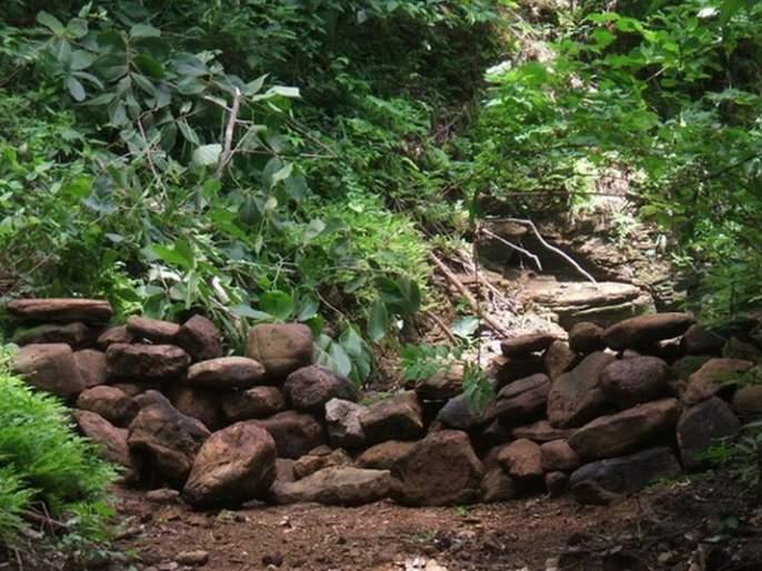 Construction of 3500 forestry dams in Akola district | अकोला जिल्ह्यात लोकसहभागातून ३५०० वनराई बंधारे बांधणार!