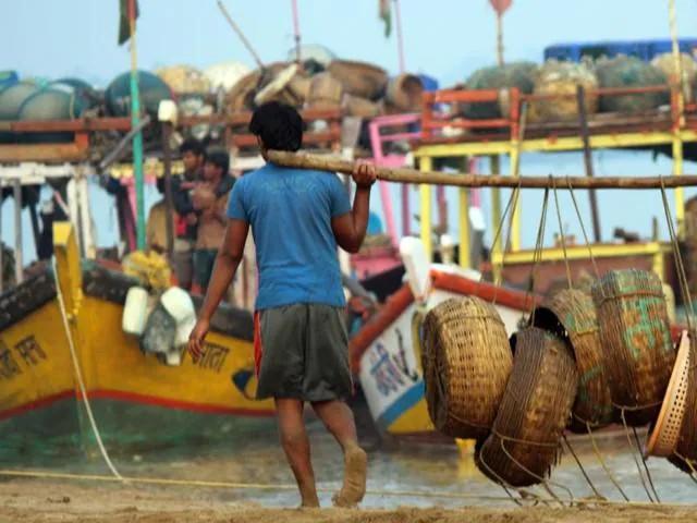 Announce financial package to fishermen, demand of MLA Lovekar to CM   मच्छिमारांना आर्थिक पॅकेज जाहीर करा, आमदार लव्हेकर यांची मुख्यमंत्र्यांकडे मागणी