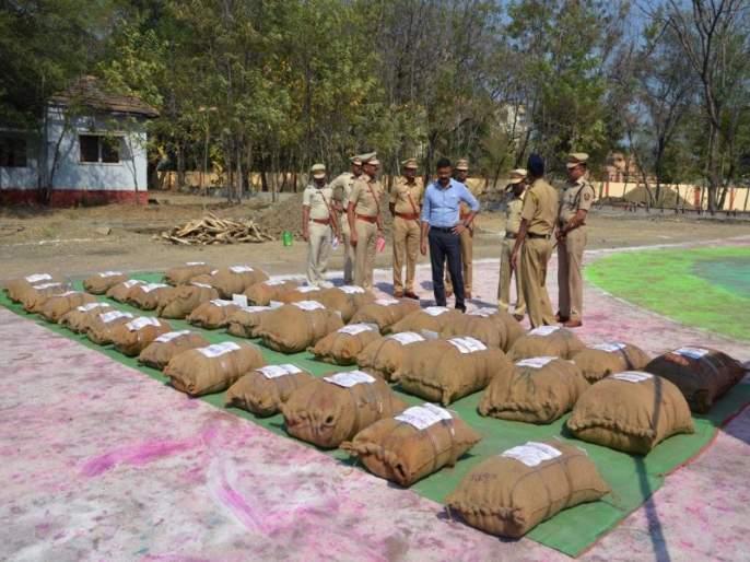Police destroyed 1344 kg of ganja and destroyed them | पोलिसांनी १३४४ किलो गांजा केला नष्ट