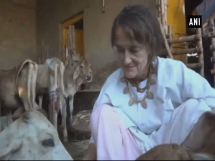 cam in India,and became mother of 1800 cows; The story of a German grandmother who received 'Padmashree' | भारत फिरायला आली अन् 1800 गायींची 'आई' झाली; 'पद्मश्री' मिळवणाऱ्या जर्मन आजीची गोष्ट