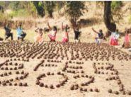 Chimukalya's resolution of one lakh seed balls | चिमुकल्यांचा एक लाख सीड बॉल्सचा संकल्प