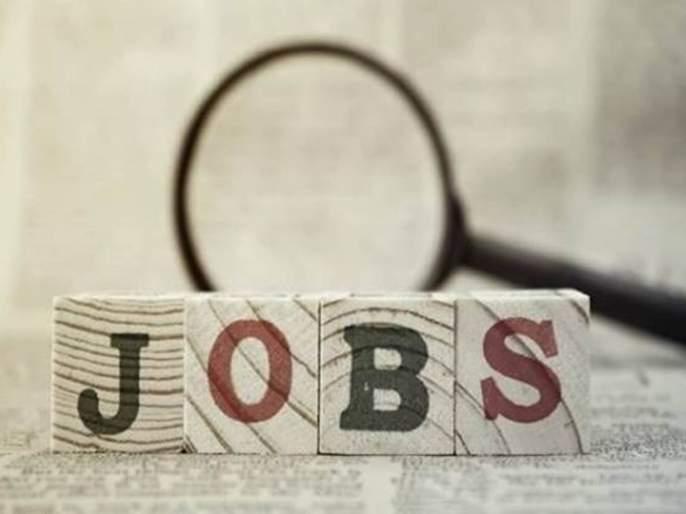 No exams, just an interview and a government job in India Seeds Recruitment 2020   परीक्षा नाही, केवळ एक मुलाखत अन् सरकारी नोकरी; 43000 रुपये पगार