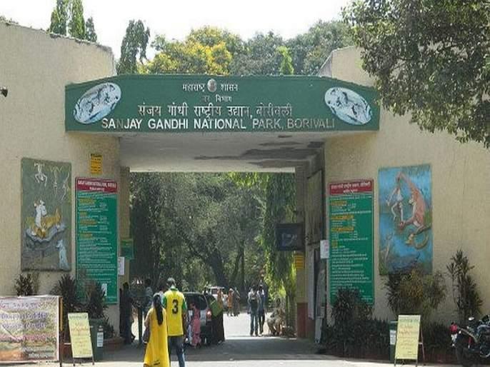 DNA testing of wildlife in Sanjay Gandhi Park; Maharashtra will be the first state in the country | संजय गांधी उद्यानातील वन्यप्राण्यांची डीएनए चाचणी;महाराष्ट्र ठरणार देशातील पहिले राज्य