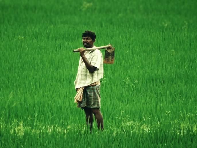 Payment of agricultural produce to farmers in 3 days | शेतकऱ्यांना ३ दिवसांतशेतमालाची रक्कम