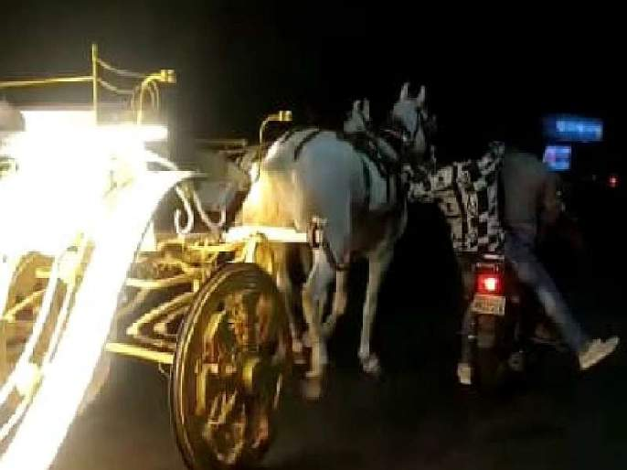 Video : The horseman and the horse were also injured while controlling the overturned buggy | Video : उधळलेली बग्गी नियंत्रित करताना घोडामालक अन् घोडाही जखमी