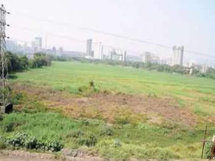 Goa No FIR against 5 who returned SEZ land | गोव्यात सेझच्या वादामुळे सरकार अडचणीत