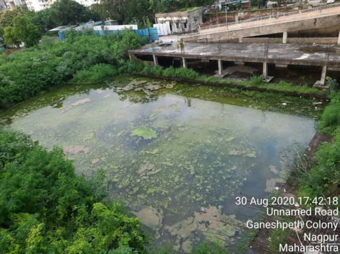 Uncleanliness in Godrej Anandan Township: Petition in High Court | गोदरेज आनंदन टाऊनशिपमध्ये अस्वच्छता : हायकोर्टात याचिका