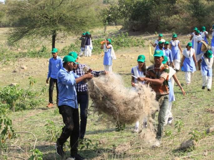 'Green Valentine's Day' Celebrates in Katepurna Wildlife Sanctuary | काटेपुर्णा अभयारण्यात श्रमदानाने साजरा झाला 'ग्रिन व्हॅलेंटाइन डे'
